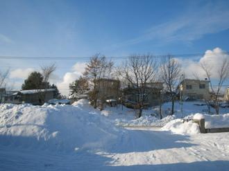 2009-1-13 アラビカ珈琲 009.jpg