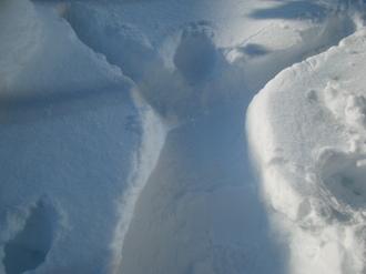 2009-1-4 雪おろし 006.jpg