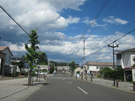 2条神社・メロン 008.JPG