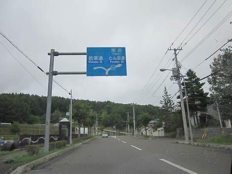 8号線〜昭和通〜美山小学校付近 007.JPG