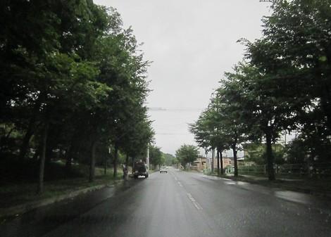 8号線〜昭和通〜美山小学校付近 010 (2).JPG