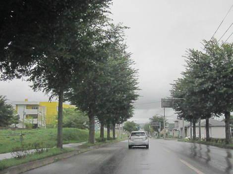 8号線〜昭和通〜美山小学校付近 012.JPG