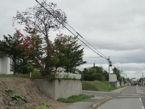 キタムラ・幸町・新井通り・夕陽・北斗から美山 080.JPG