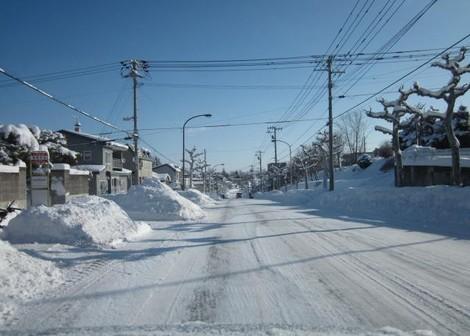 キラキラ光る雪 019 (2).JPG