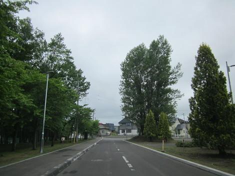 コーチャンフォー・夕陽ヶ丘通り 025.JPG