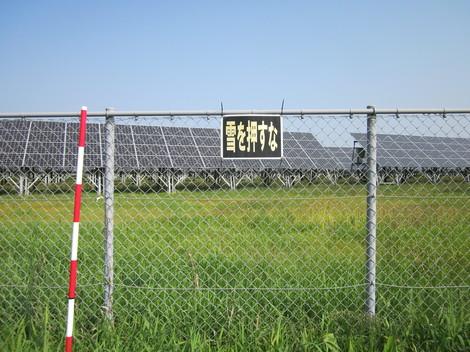 フェンス・紅葉 002.JPG