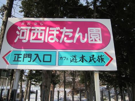 元営林局団地・牡丹園付近・川西 007.JPG