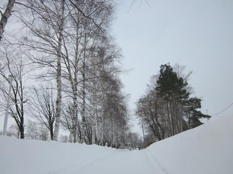 冬景色 002.JPG