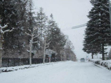 大雪 006.JPG