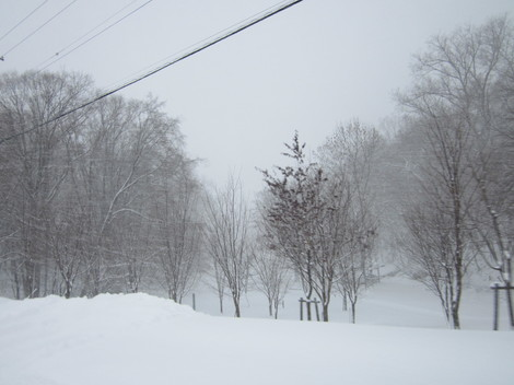 大雪 007.JPG