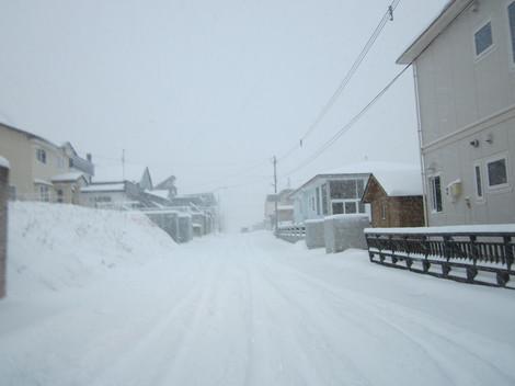 大雪 008.JPG