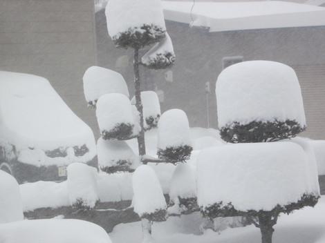 大雪 016.JPG