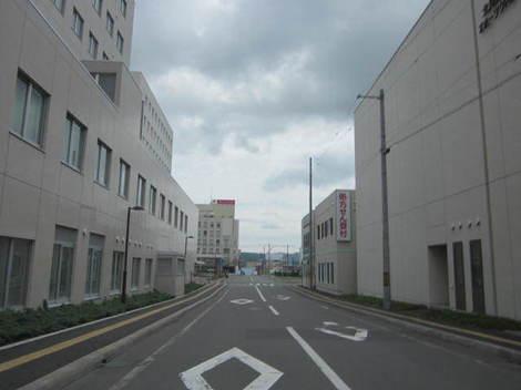 学園祭から郵便本局・猫 012.JPG