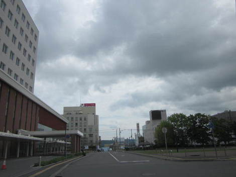学園祭から郵便本局・猫 013.JPG