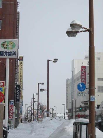 新市庁舎・1条東 003.JPG