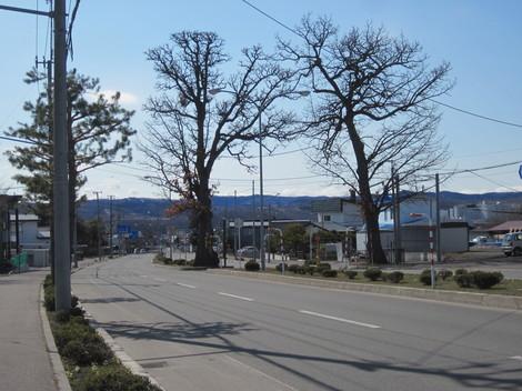 東陵運動公園 001.JPG