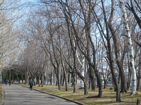 東陵運動公園 019.JPG