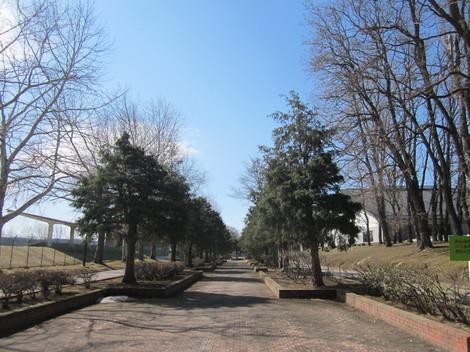 東陵運動公園 028.JPG