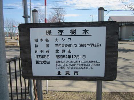 東陵運動公園 038.JPG
