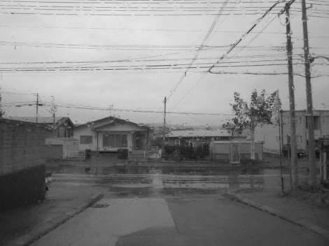 畑・雨 007.JPG