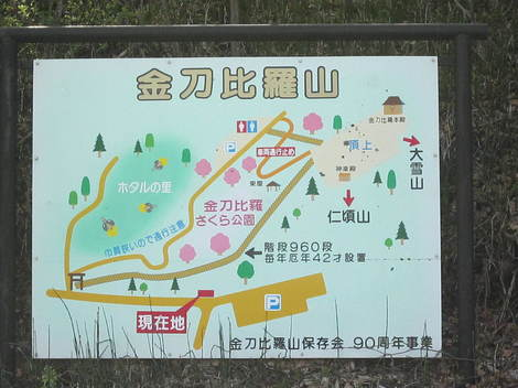 金比羅山桜・アイス 001.JPG