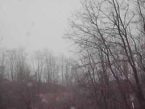 雨の北見 007.JPG