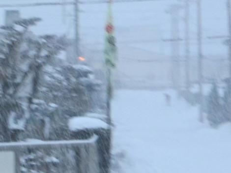 雪 001.JPG