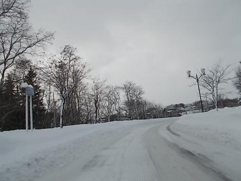 雪 011.JPG