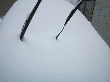 雪かき 005.JPG