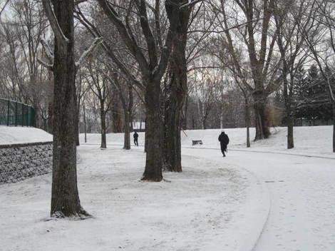 雪が降る 005.JPG