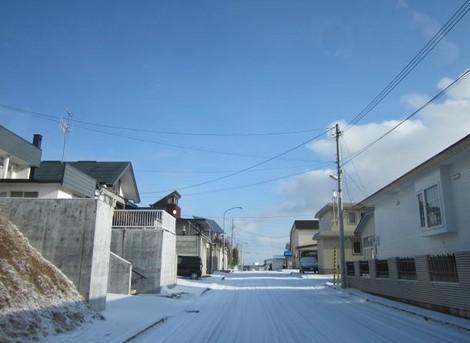 雪が降る 008 (2).JPG