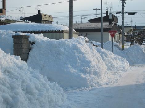 雪山 009.JPG