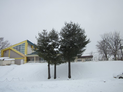 雪景色 007.JPG