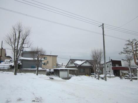 雪景色 008.JPG