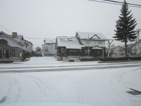 雪降る 001.JPG