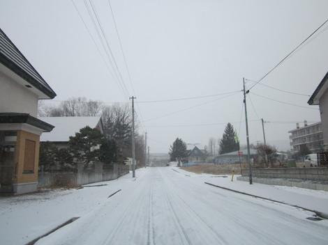 雪降る 002.JPG