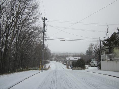 雪降る 003.JPG