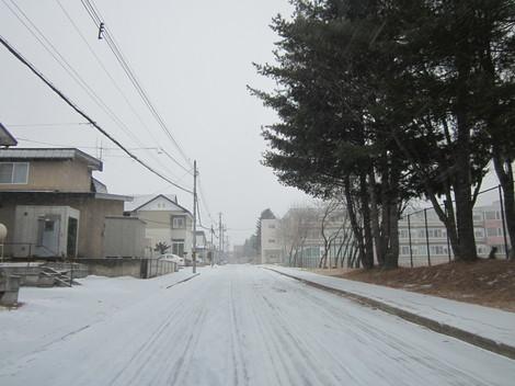 雪降る 004.JPG