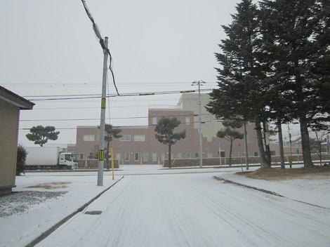 雪降る 006.JPG