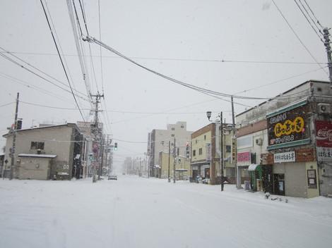 雪降る 008.JPG