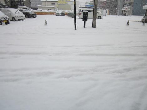 雪降る 011.JPG