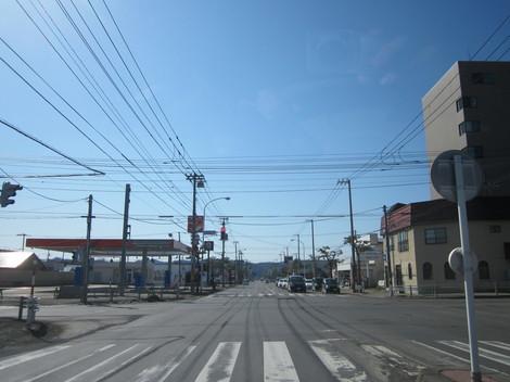 3号線・北光・こもれび・花 001.JPG
