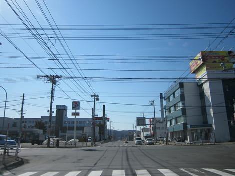 3号線・北光・こもれび・花 006.JPG